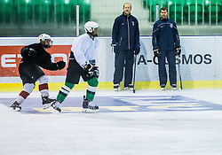 Nik Zupancic and Matej Hocevar during morning training at Ice Hockey camp of I. Jan, on July 28, 2016 in Ledna dvorana Tivoli, Ljubljana, Slovenia. Photo by Vid Ponikvar / Sportida