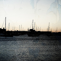 Sailboats moored in the morning in the San Diego Bay or the harbor.