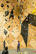 Climbers at Brooklyn Boulders, in Brooklyn's Gowanus neighborhood.