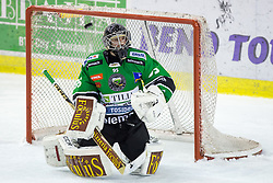 23.01.2015, Hala Tivoli, Ljubljana, SLO, EBEL, HDD Telemach Olimpija Ljubljana vs HC Znojmo Orli, 42. Runde, in picture Tomaz Trelc (HDD Telemach Olimpija, #95) during the Erste Bank Icehockey League 42. Round between HDD Telemach Olimpija Ljubljana and HC Znojmo Orli at the Hala Tivoli, Ljubljana, Slovenia on 2015/01/23. Photo by Morgan Kristan / Sportida