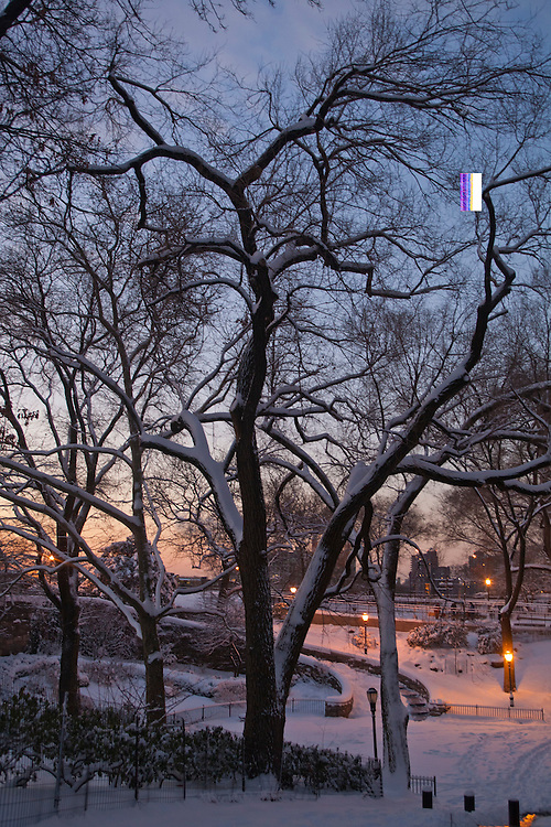 Christmas, Carl Schruz Park