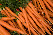 close up of organic carrots displayed at a green market