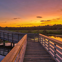 South Florida landscape photography from outdoor photographer Juergen Roth showing the waterscape of Green Cay Nature Center and Wetlands with a boardwalk leading into the beautiful sunset light. Green Cay and Wakodahatchee Wetlands are amazing nature area for viewing and photographing wildlife in Florida. <br /> <br /> Florida nature photography images are available as museum quality photo prints, canvas prints, wood prints, acrylic prints or metal prints. Fine art prints may be framed and matted to the individual liking and interior design room project needs:<br /> <br /> https://juergen-roth.pixels.com/featured/green-cay-wetlands-juergen-roth.html<br /> <br /> All Green Cay Nature Center and Wetlands photography images are available for photography image licensing at www.RothGalleries.com. Please contact me direct with any questions or request.<br /> <br /> Good light and happy photo making!<br /> <br /> My best,<br /> <br /> Juergen<br /> Prints: http://www.rothgalleries.com<br /> Photo Blog: http://whereintheworldisjuergen.blogspot.com<br /> Instagram: https://www.instagram.com/rothgalleries<br /> Twitter: https://twitter.com/naturefineart<br /> Facebook: https://www.facebook.com/naturefineart