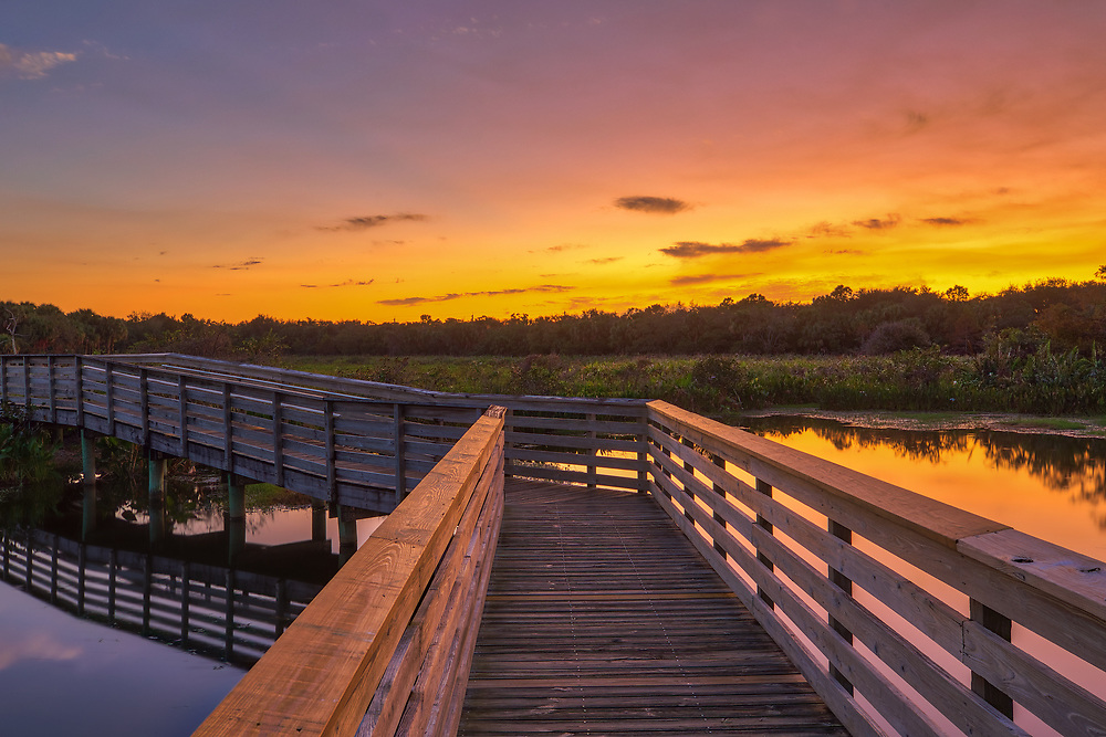 South Florida landscape photography from outdoor photographer Juergen Roth showing the waterscape of Green Cay Nature Center and Wetlands with a boardwalk leading into the beautiful sunset light. Green Cay and Wakodahatchee Wetlands are amazing nature area for viewing and photographing wildlife in Florida. <br />