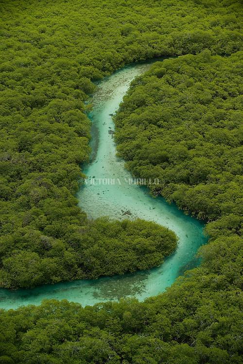 Guna Yala es una comarca ind&iacute;gena en Panam&aacute;, habitada por la etnia Guna. Antiguamente la comarca se llamaba San Blas hasta 19982 y como Kuna Yala hasta 2010. Su capital es El Porvenir. Limita al norte con el Mar Caribe, al sur con la provincia de Dari&eacute;n y la comarca Ember&aacute; Wounnan, al este con Colombia y al oeste con la provincia de Col&oacute;n.<br /> <br /> La Comarca de Guna Yala posee un &aacute;rea de 2,306 km? . Consiste en una franja estrecha de tierra de 373 km de largo en la costa este del Caribe paname&ntilde;o, bordeando la provincia de Dari&eacute;n y Colombia. Un archipi&eacute;lago de 365 islas rodean la costa, de las cuales 36 est&aacute;n habitadas.<br /> <br /> Guna Yala en lengua guna significa &quot;Tierra Guna&quot; o &quot;Monta&ntilde;a Guna&quot;.<br /> <br /> &copy;Alejandro Balaguer/Fundaci&oacute;n Albatros Media.
