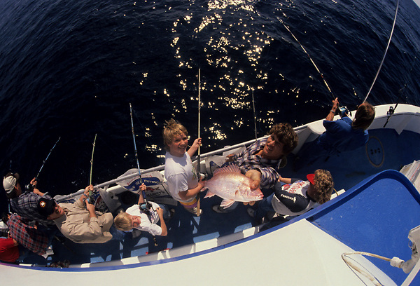 Stock photo of the aerial view of a group fishing from the side of a large boat