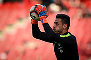SYDNEY, NSW - FEBRUARY 24: Western Sydney Wanderers goalkeeper Vedran Janjetovic (20) warming up at round 20 of the Hyundai A-League Soccer between Western Sydney Wanderers FC and Perth Glory on February 24, 2019 at Spotless Stadium, NSW. (Photo by Speed Media/Icon Sportswire)