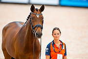 Findsley<br /> FEI World Equestrian Games Tryon 2018<br /> © DigiShots