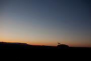 Navajo Nation a dog is silhouetted against the sunset on a mesa near Chinle, Arizona on the Navajo Reservation.