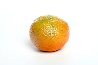Studio shot of mandarin on white background