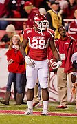 Nov 12, 2011; Fayetteville, AR, USA; Arkansas Razorback running back Broderick Green (29) stands on the field following a play in the second half of a game against the Tennessee Volunteers at Donald W. Reynolds Razorback Stadium. Arkansas defeated Tennessee 49-7. Mandatory Credit: Beth Hall-US PRESSWIRE