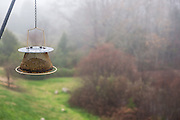 Bird feeder in the fog.