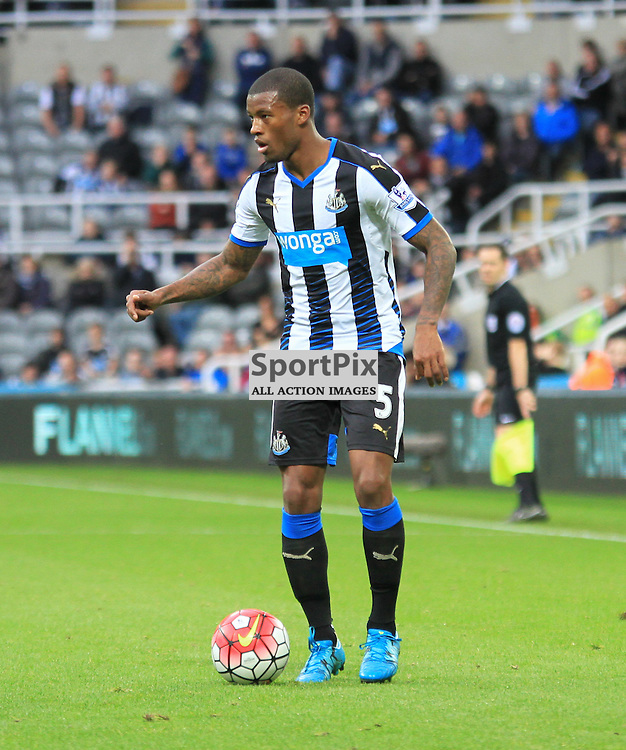 Newcastle United V Norwich City Premier League 18th October 2015; Georginio Wijnaldum (Newcastle, 5)  during the Newcastle V Norwich match, played at St. James Park, Newcastle.
