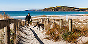 Man with dog, walking through beach access path. Omaha Beach, North Auckland.