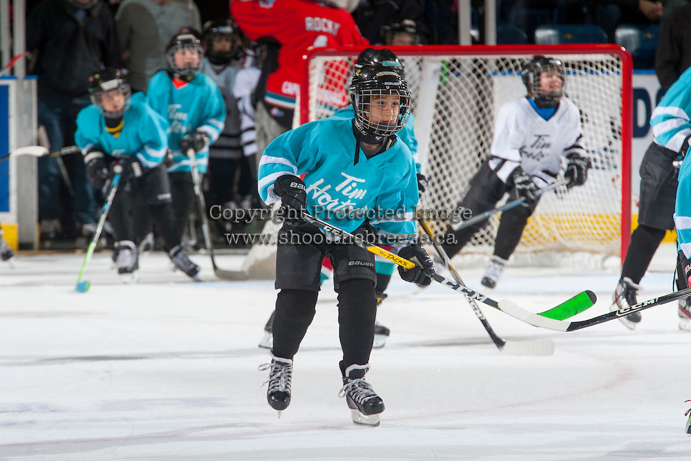 KELOWNA, CANADA - DECEMBER 7: Mini minor hockey players scrimmage during intermission between the Kelowna Rockets and the Seattle Thunderbirds on December 7, 2016 at Prospera Place in Kelowna, British Columbia, Canada.  (Photo by Marissa Baecker/Shoot the Breeze)  *** Local Caption ***