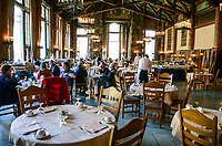 Dining room, Ahwahnee Hotel, Yosemite, California, USA, 201304171501<br /> <br /> Copyright Image from Victor Patterson, Belfast, UK<br /> <br /> t: +44 28 9066 1296 (from Rep of Ireland 048 9066 1296)<br /> m: +44 7802 353836<br /> <br /> victorpattersonbelfast@gmail.com<br /> <br /> www.victorpatterson.com OR <br /> www.images4media.com<br /> <br /> Please see my Terms and Conditions of Use at https://www.victorpatterson.com/page2<br /> It is IMPORTANT that you familiarise yourself with them.<br /> <br /> Images used on the Internet incur an additional cost and must be visibly watermarked i.e. © Victor Patterson within the body of the image and copyright metadata must not be deleted. Images used on the Internet have a size restriction of 4 kbs and are chargeable at rates available at victorpatterson.com.<br /> <br /> This image is only available for the use of the download recipient i.e. television station, newspaper, magazine, book publisher, etc, and must not be passed on to any third party. It is also downloaded on condition that each and every usage is notified within 7 days to victorpattersonbelfast@gmail.com.<br /> <br /> The right of Victor Patterson to be identified as the author is asserted in accordance with The Copyright Designs And Patents Act (1988). All moral rights are asserted.