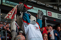 KELOWNA, CANADA - APRIL 5: Rocky Racoon, mascot of the Kelowna Rockets celebrates on April 5, 2014 during Game 2 of the second round of WHL Playoffs at Prospera Place in Kelowna, British Columbia, Canada.   (Photo by Marissa Baecker/Getty Images)  *** Local Caption ***
