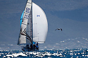 A gull flies past a yacht racing in the False Bay Yacht Club Spring Regatta series off Simonstown in Cape Town, South Africa 17 September 2017. The False Bay Yacht Club Spring Regatta sees South Africa's premier racing yachts from various clubs in the Cape competing over three days in the annual regatta at the change of seasons with good conditions for racing in False Bay.