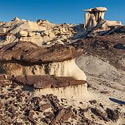 Mushroom Hoodoo - Bisti Badlands - New Mexico