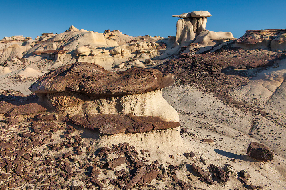 Mushroom Hoodoo - Bisti Badlands - New Mexico