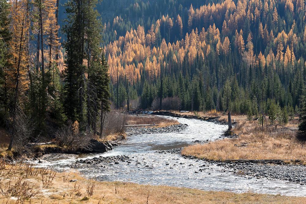 Imnaha River in autumn, Wallowa Mountains, Oregon.