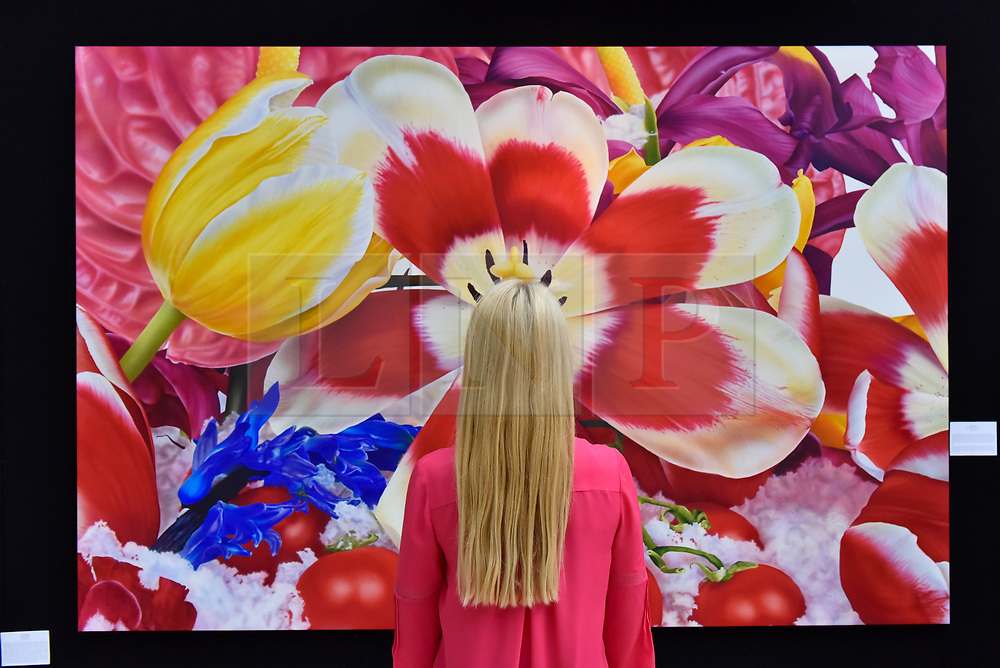 """© Licensed to London News Pictures. 27/06/2017. London, UK.  A visitor views """"Upper East-Side Glacier, 2007"""" by Marc Quinn at The Arts & Antiques Fair taking place at Olympia in Kensington.  The event is the UK's largest and most established art and antiques fair and runs until 2 July.  Photo credit : Stephen Chung/LNP"""