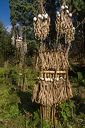 Apatani sacrificial area. Either for ceremonies or done by shaman when someone is household in sick<br />