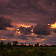 &quot;Fire in the Sky Tonight&quot;<br /> <br /> Feel the rush of emotions and excitement as you watch the many varieties of clouds fly by during an explosive sunset over a Midwestern farm field in Michigan!