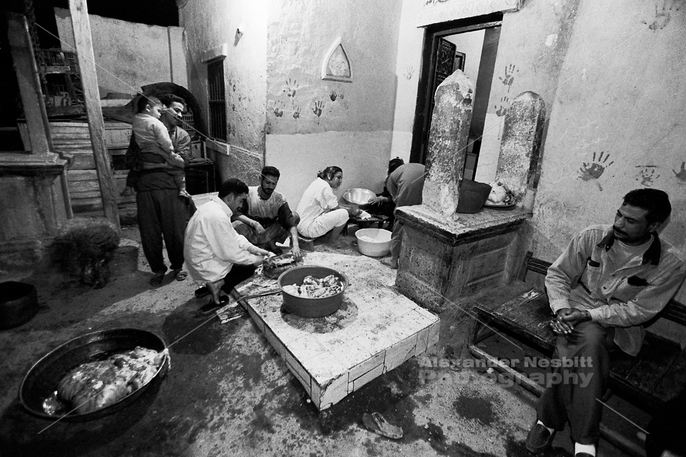 Cairo, Egypt, The City of the Dead, 2000 - On the Eid al Akhtar a family butchering a sheep in their compound amoung the graves.