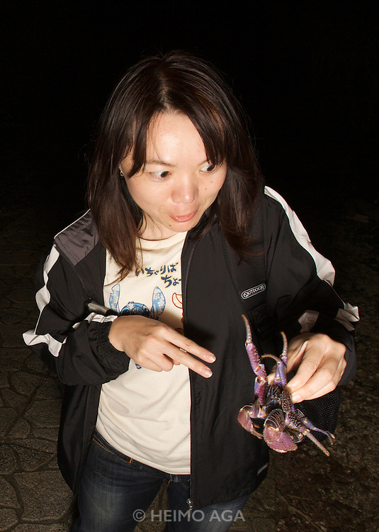 Kurima-jima. Coconut crab night safari.