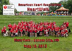AHA KC HeartWalk 2013 _ Groups
