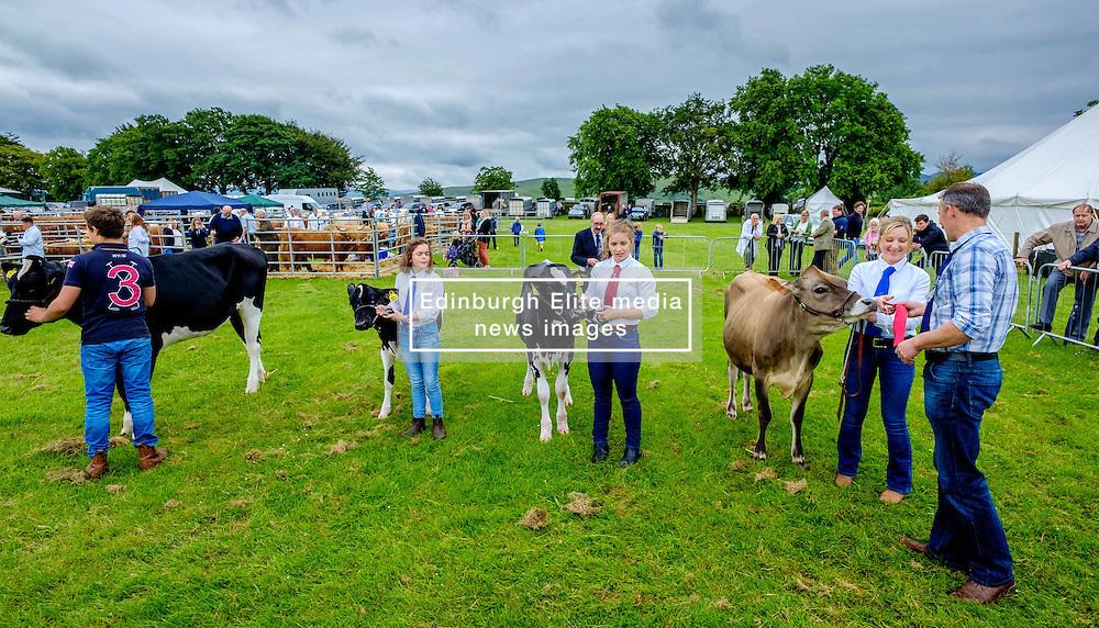 Biggar, South Lanarkshire, Scotland 23 July 2016<br /> <br /> Showing cattle.<br /> (c) Andrew Wilson | Edinburgh Elite media