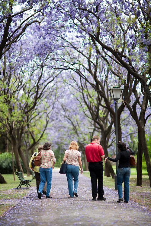 People walking on a park, Seville, Spain