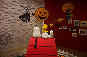 Snoopy Museum for Pen