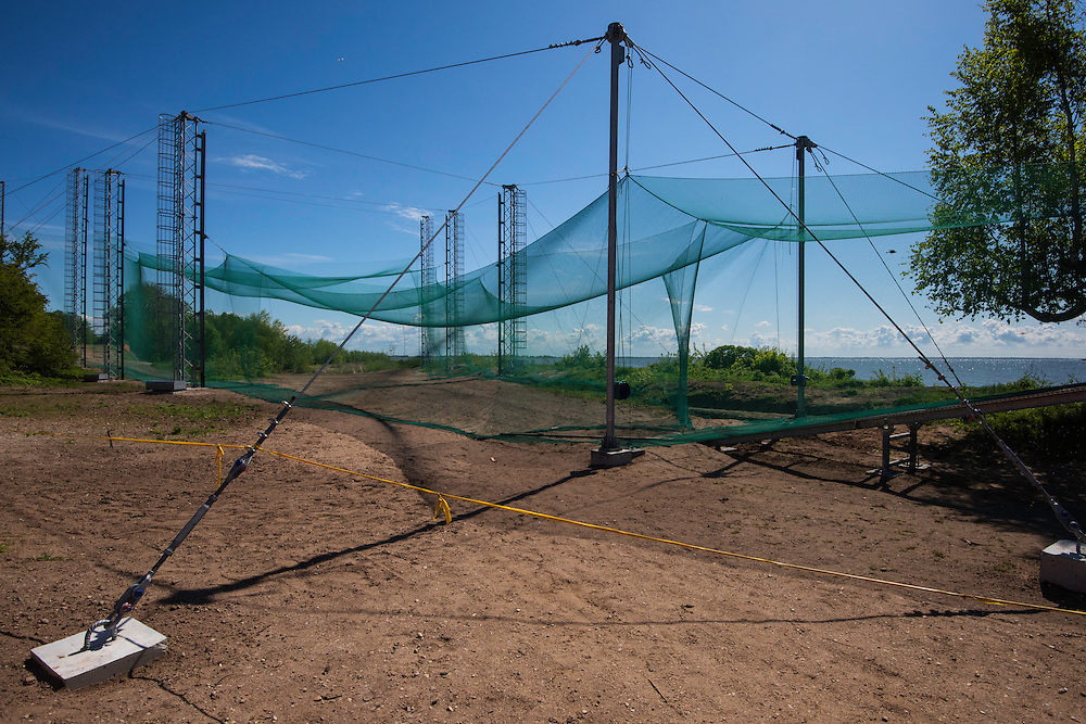 Helgoland bird trap at the Ventes Ragas bird ringing station, one of the most modern in the world, Nemunas River Delta, Lithuania