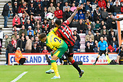 Callum Wilson (13) of AFC Bournemouth battles with Max Aarons (2) of Norwich City to get on the end of a cross during the Premier League match between Bournemouth and Norwich City at the Vitality Stadium, Bournemouth, England on 19 October 2019.