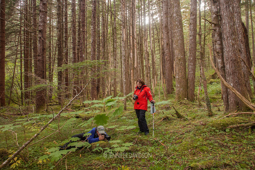 Guests from the National Geographic Sea Lion photograph during a hike in the forest at Williams Cove, Southeast Alaska.