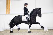 Esther Liano - Pattaconk's Hidde<br /> Europees Kampioenschap Jonge Paarden 2017<br /> © DigiShots
