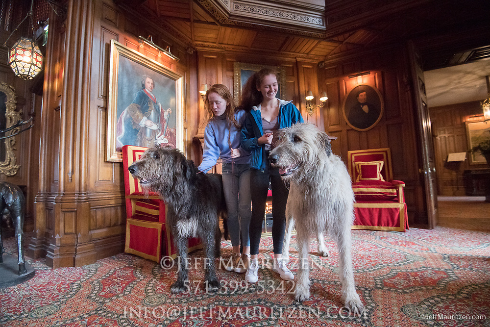 Two redheaded girls pet two Irish Wolfhounds inside Ashford Castle, a 13th century castle turned into a 5 star luxury hotel located in Cong, Ireland.