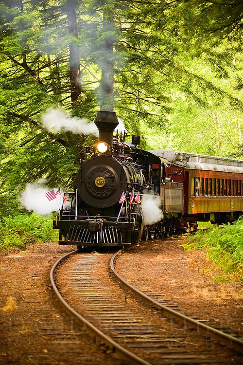 Skunk Train, Mendocino, Fort Bragg, Willits,  California