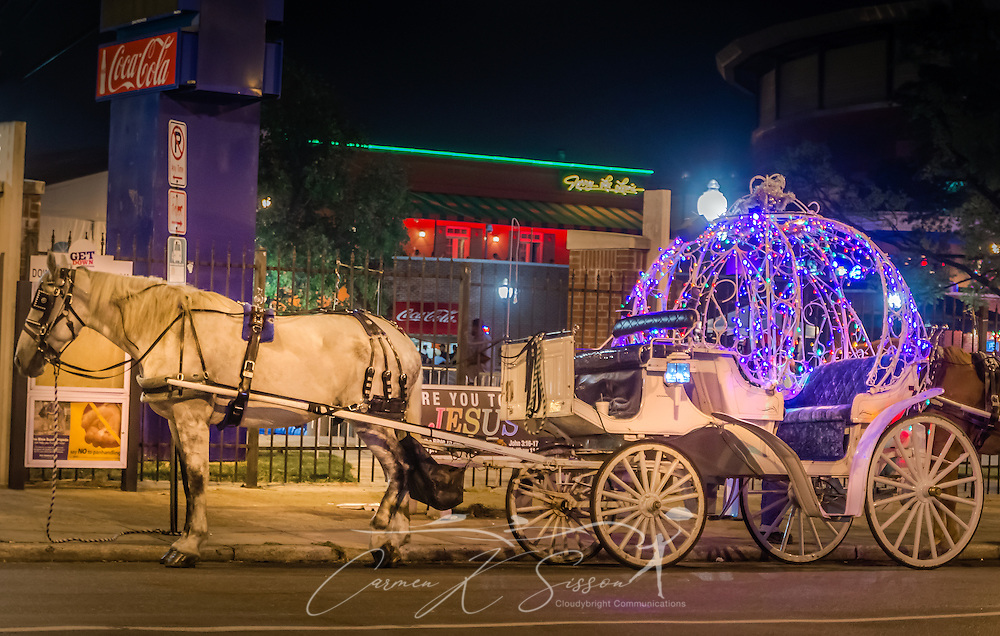 A horse rests while waiting for the next customer on Beale Street, Sept. 5, 2015, in Memphis, Tennessee. The street features 1.8 miles of restaurants, nightclubs, and blues bars. Horse-drawn carriages are a common sight downtown, delighting tourists both young and old. (Photo by Carmen K. Sisson/Cloudybright)