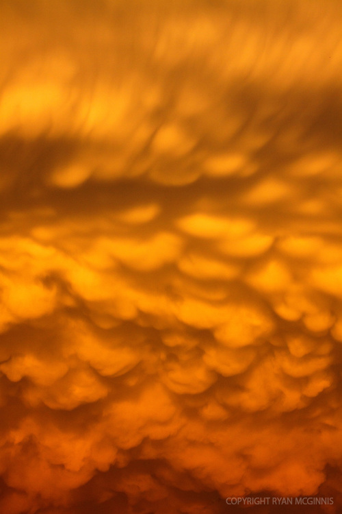 Mammatus clouds in Texas, June 14, 2010.