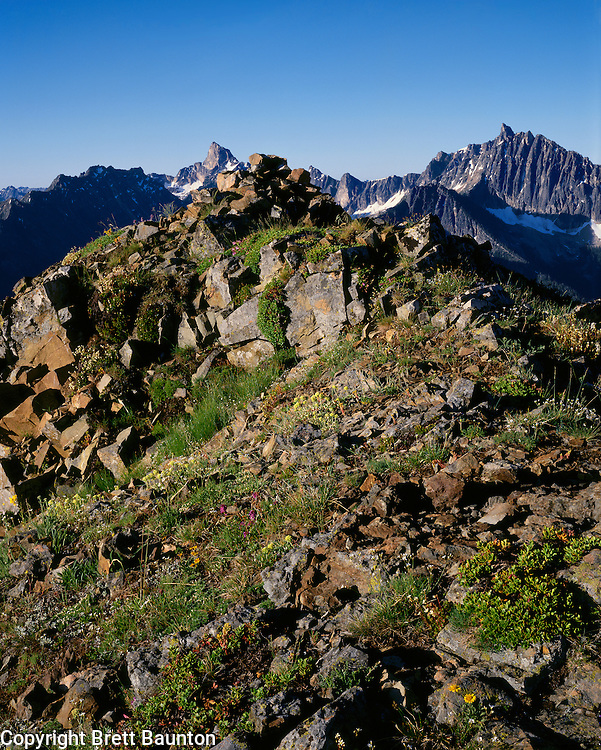 Grasshopper Pass, Golden Horn and Azurite Pk, North Cascades, Pasayten Wilderness, Wa