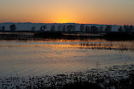 Sunset over the marsh, Sacramento National Wildlife Refuge