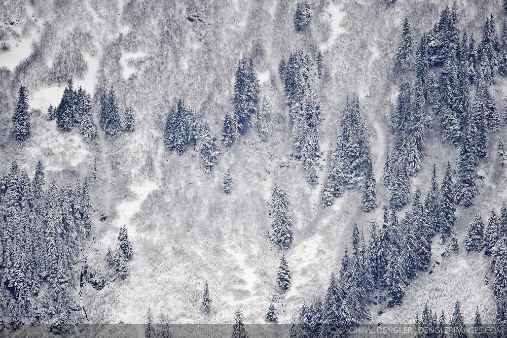 Snow covered mountain slope near the Alaska Chilkat Bald Eagle Preserve near Haines, Alaska.