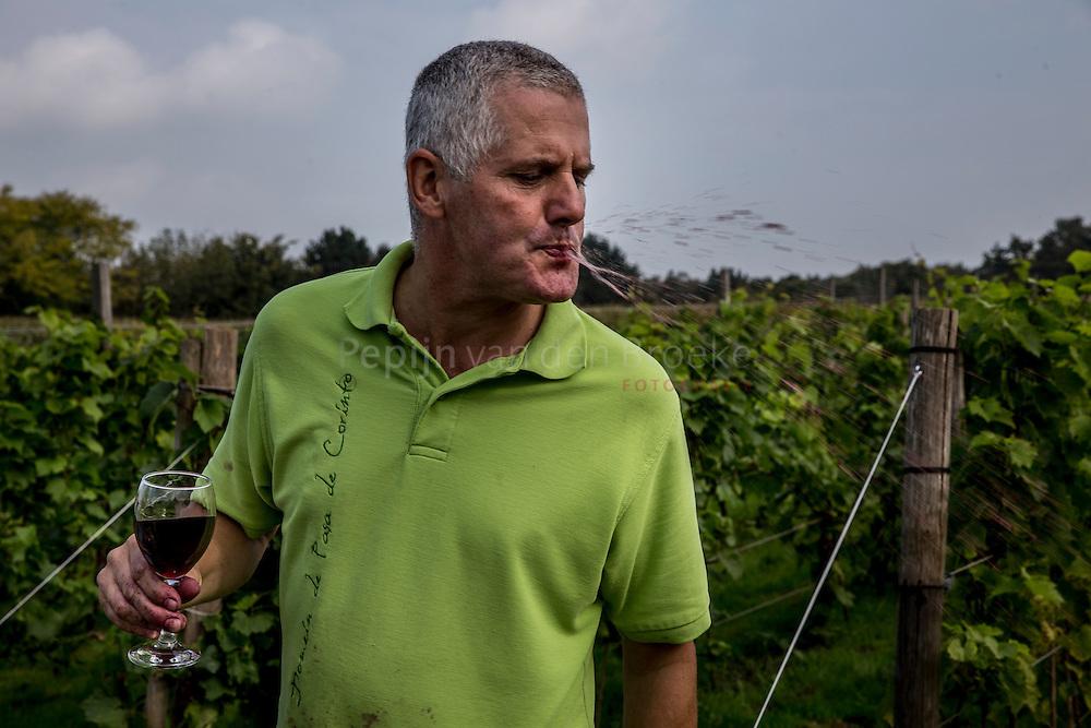 Glimmen. 20140930. Hennie Vegt spuugt de wijn uit na het proeven. Wijngaard Domein De Pasa De Corinto bevindt zich op de zuidwest helling van de Hondsrug op de Glimmer Esch. foto: Pepijn van den Broeke. kilometers: 28