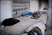 "Homeless people sleep on the ground. Among them there is a dead body of an heroin abuser. A few days later will be removed by the authorities. Rawalpindi, Pakistan, on thursday, November 27 2008.....""Pakistan is one of the countries hardest hits by the narcotics abuse into the world, during the last years it is facing a dramatic crisis as it regards the heroin consumption. The Unodc (United Nations Office on Drugs and Crime) has reported a conspicuous decline in heroin production in Southeast Asia, while damage to a big expansion in Southwest Asia. Pakistan falls under the Golden Crescent, which is one of the two major illicit opium producing centres in Asia, situated in the mountain area at the borderline between Iran, Afghanistan and Pakistan itself. .During the last 20 years drug trafficking is flourishing in the Country. It is the key transit point for Afghan drugs, including heroin, opium, morphine, and hashish, bound for Western countries, the Arab states of the Persian Gulf and Africa..Hashish and heroin seem to be the preferred drugs prevalence among males in the age bracket of 15-45 years, women comprise only 3%. More then 5% of whole country's population (constituted by around 170 milion individuals),  are regular heroin users, this abuse is conspicuous as more of an urban phenomenon. The substance is usually smoked or the smoke is inhaled, while small number of injection cases have begun to emerge in some few areas..Statistics say, drug addicts have six years of education. Heroin has been identified as the drug predominantly responsible for creating unrest in the society."""