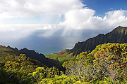 View over the Kalalau Valley, with curtains of rain falling over the ocean in the background. The valley is located in Na Pali Coast State Park, Kauai, Hawaii.