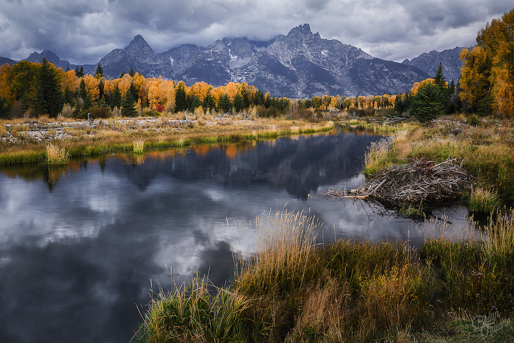 The autumn colors of the Tetons always put on a wonderful display. But this season's performance moves quickly; soon these mountains and the surrounding landscape will be coated in white for the long, cold winter.