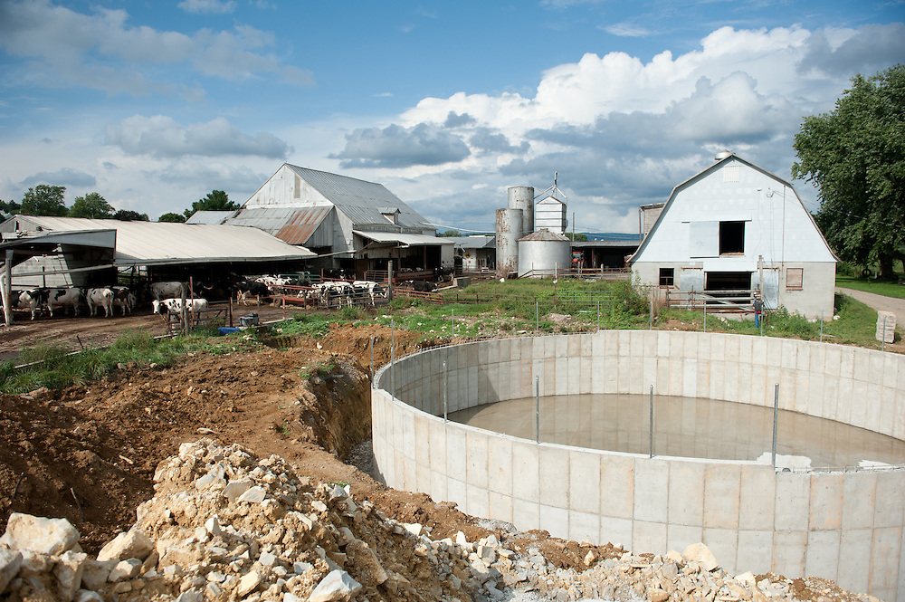 Dairy cows in barn and waste treatment structure on a farm